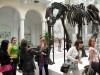 Warsztaty edukacyjne 2010 - muzeum ziemi